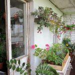 Blomster på den åpne balkongen