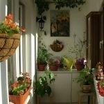 Blomster på veggen