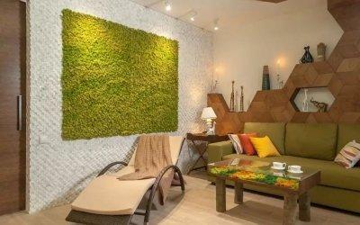 Mos i interiøret - 75 ideer for å søke på dekor