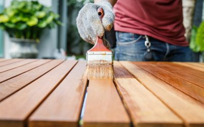 Revêtement de peinture à l'intérieur de la maison: de belles idées